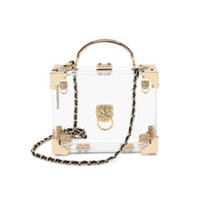 Lion Mini Trunk Clutch in Transparent Acrylic with Gold Hardware