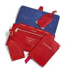 Travel Collection with Removable Inserts in Scarlet Silk Lizard