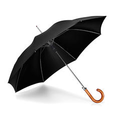 Walking Length Automatic Umbrella with Maple Wood Handle in Black