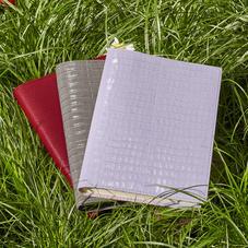 Journals & Diaries