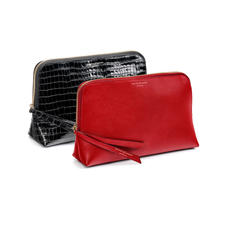 Large Cosmetic Cases