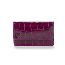 Business & Credit Card Case