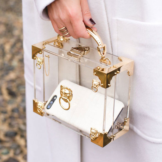 Lion Mini Trunk Clutch in Transparent Acrylic with Gold Hardware from Aspinal of London