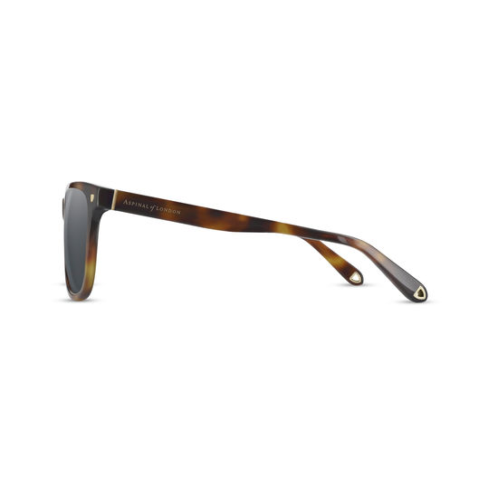 Milano Sunglasses in Tortoiseshell Acetate from Aspinal of London