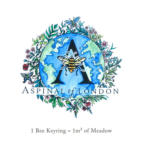 Butterfly Keyring in Smooth Meadow from Aspinal of London