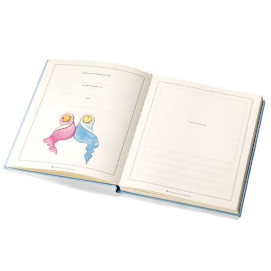 Deluxe Baby Record Book in Smooth Aqua from Aspinal of London
